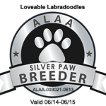 Loveable Labradoodles ALAA SILVER PAW LOGO